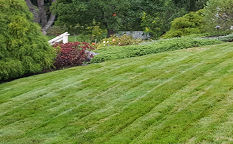 Lawn Care Saco Maine